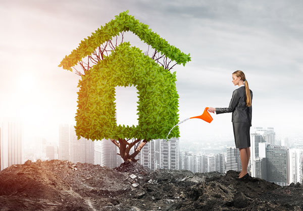 business woman watering a tree plant with the cityscape in the background